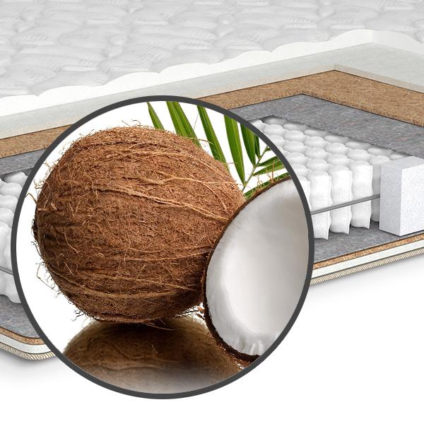 Технологии и материалы. Кокос (кокосовая койра)